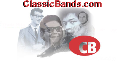 _banned rock and roll - classicbands com_